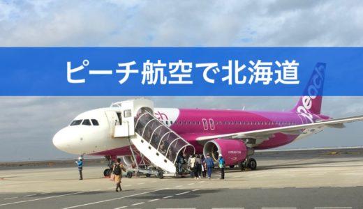 ピーチ航空の機内持ち込み荷物、重量の調整で失敗しないコツ