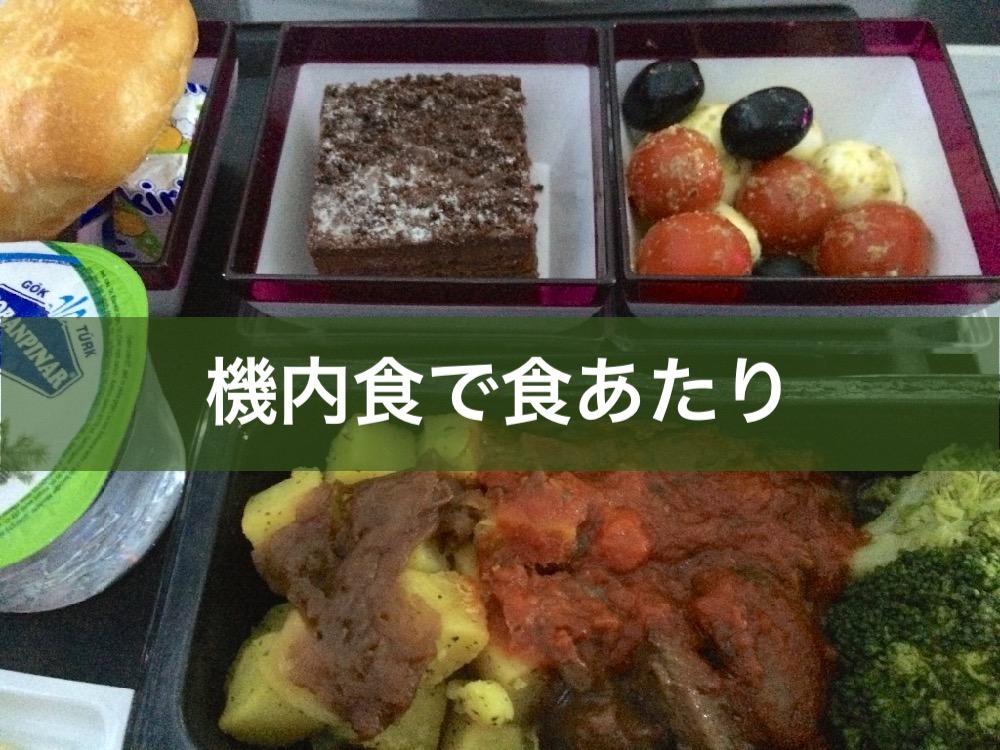 機内食で食あたり