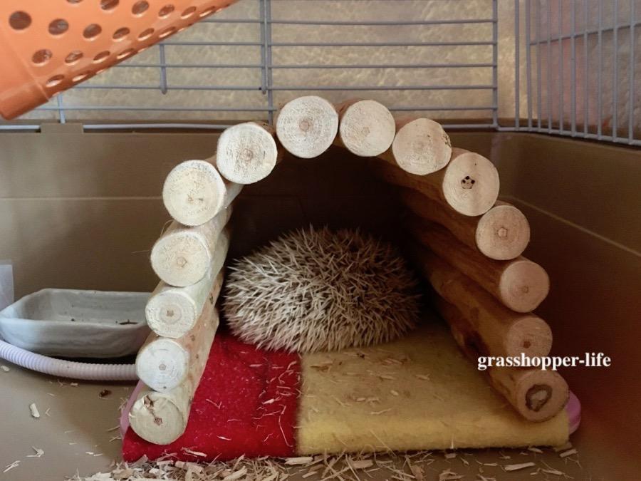 ハリネズミの暖房